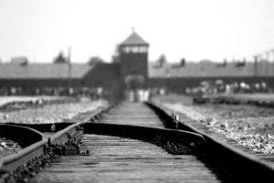 Train tracks into Auschwitz